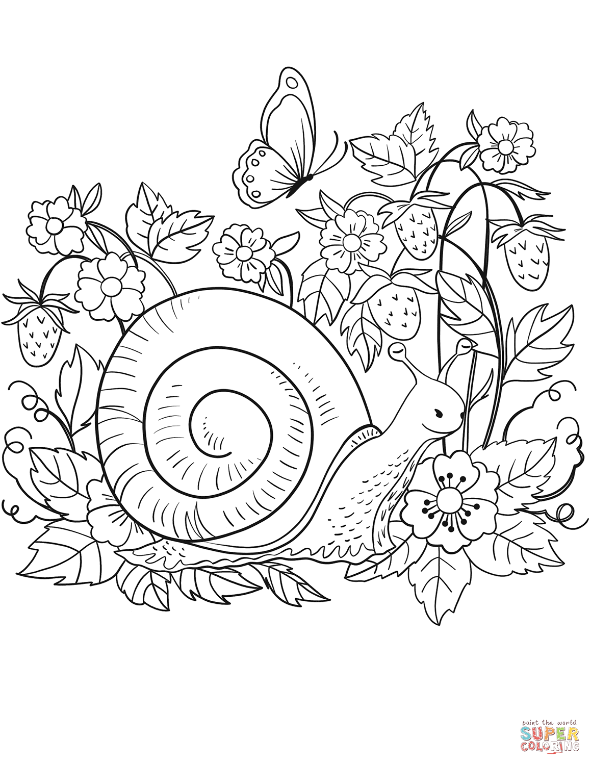 snail coloring page land snail coloring page sketch coloring page snail page coloring