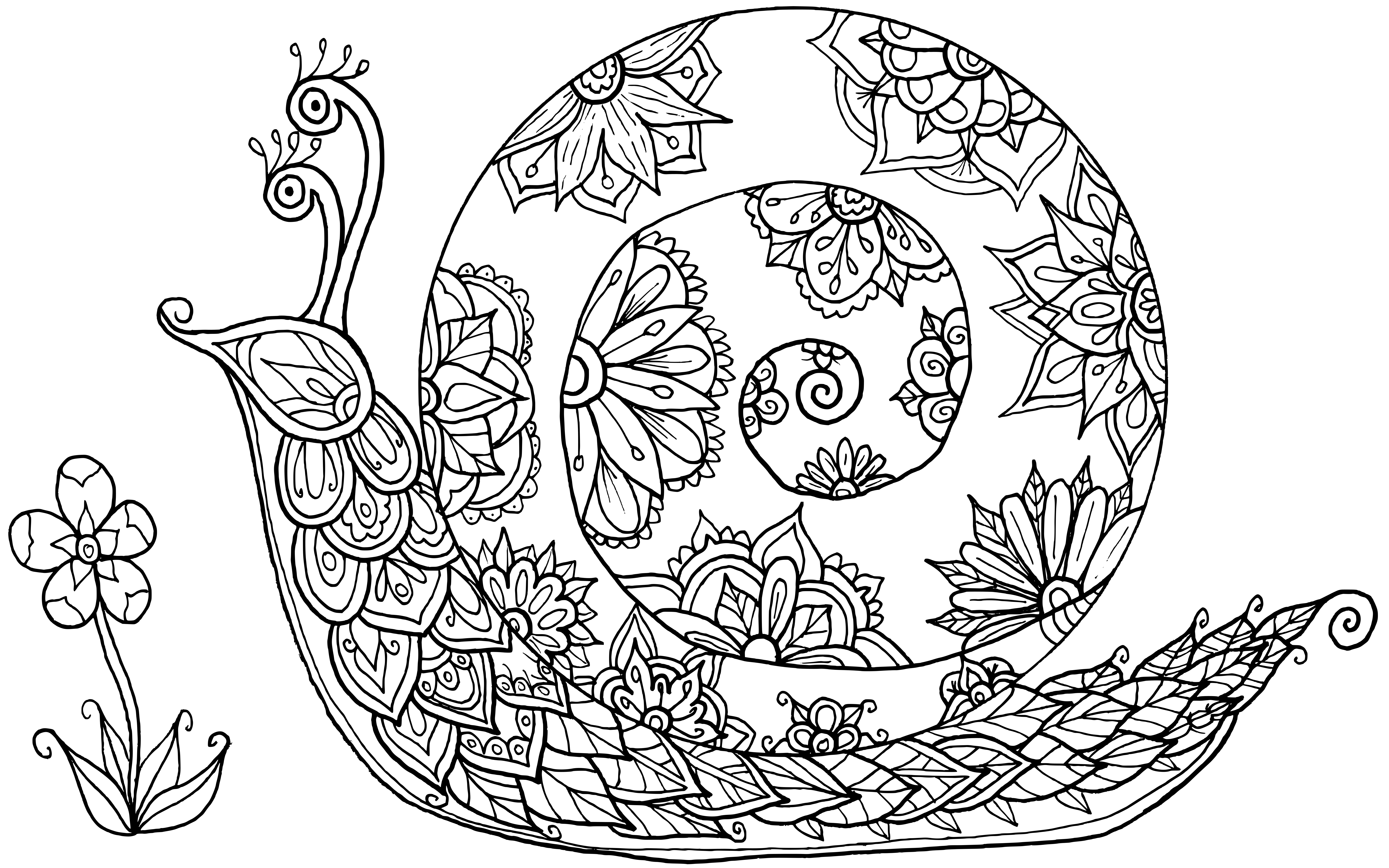 snail coloring page snail coloring page coloring home coloring snail page