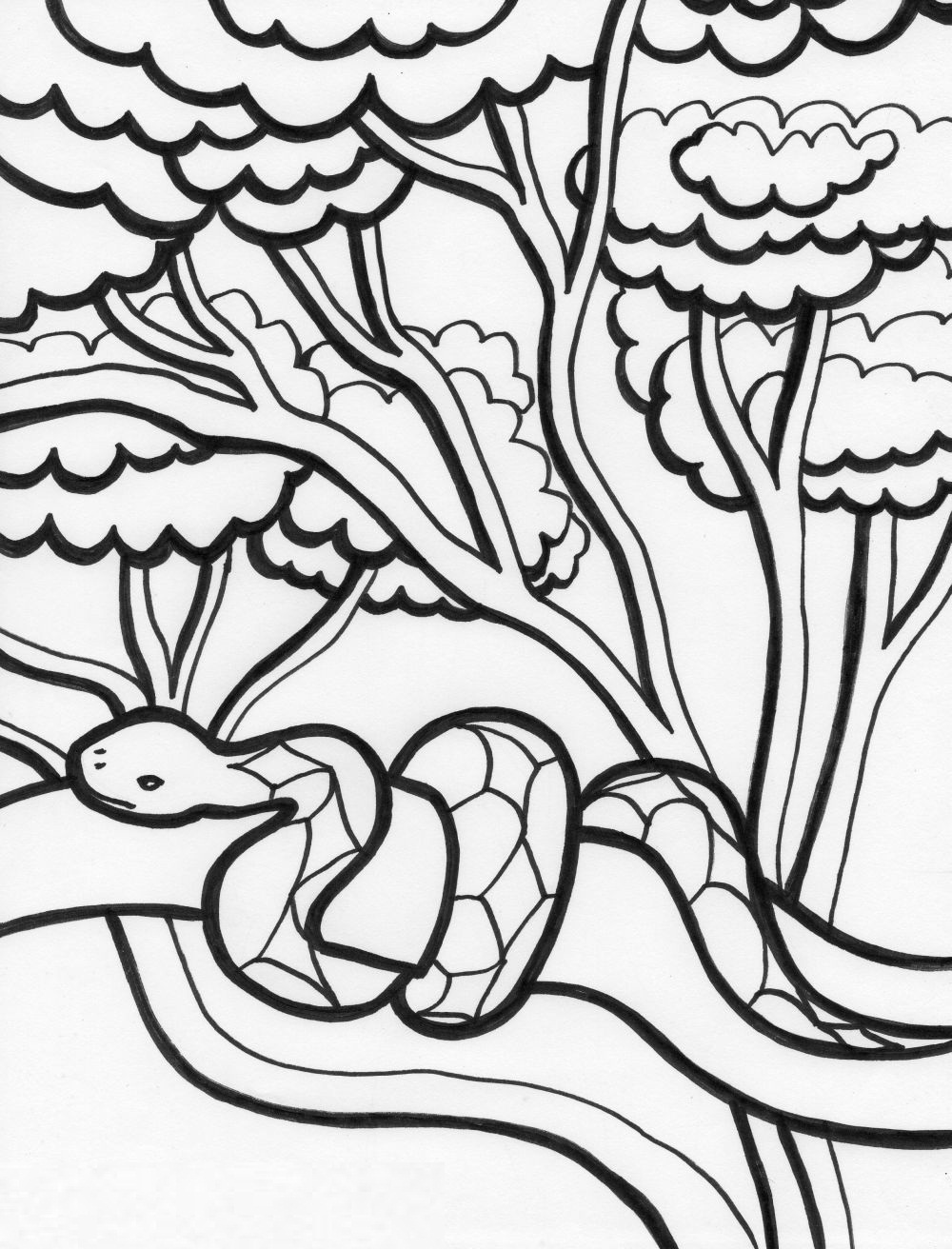 snakes to color king cobra snake coloring pages download and print for free to snakes color