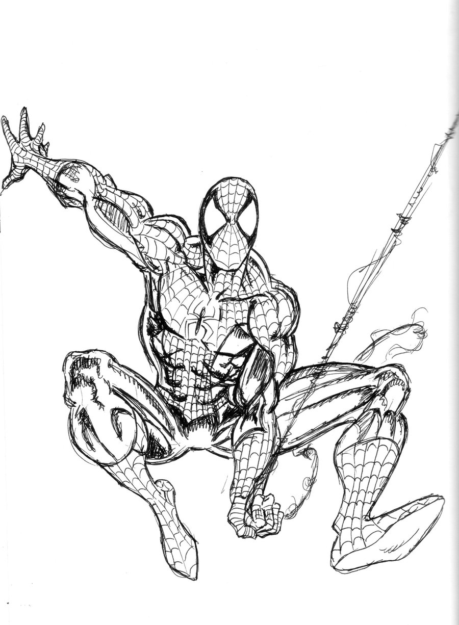 spiderman traceable dma 101db vector illustration project jaysun the traceable spiderman