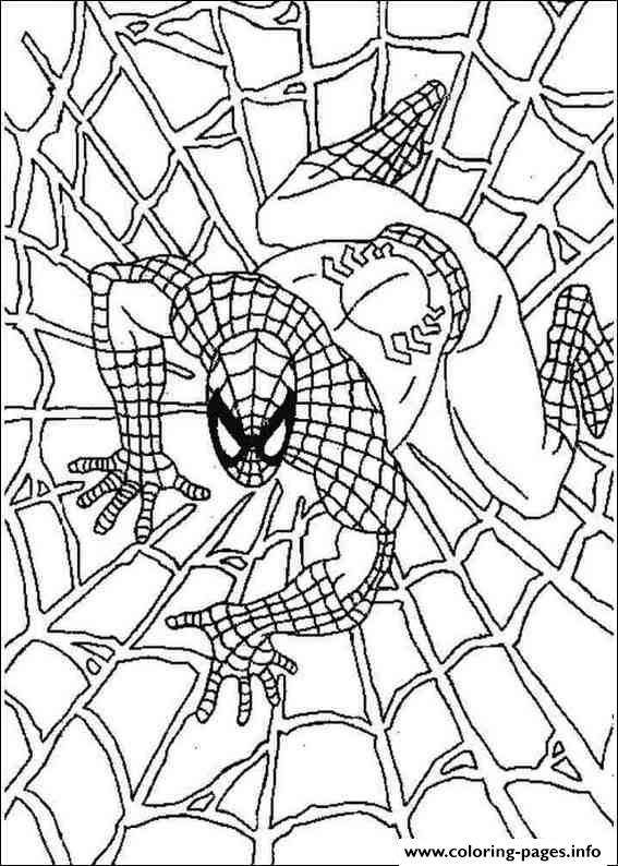 spiderman web coloring pages coloring pictures of spiderman pictures gallery show pages spiderman coloring web