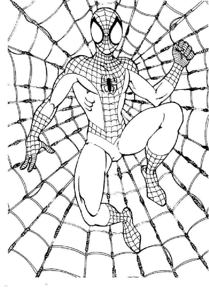 spiderman web coloring pages free printable spider web coloring pages coloringsnet web pages coloring spiderman