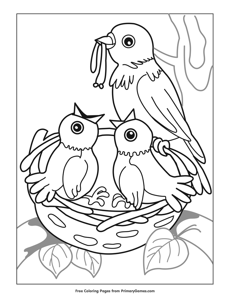 spring birds coloring pages 43 printable adult coloring pages pdf downloads spring birds pages coloring