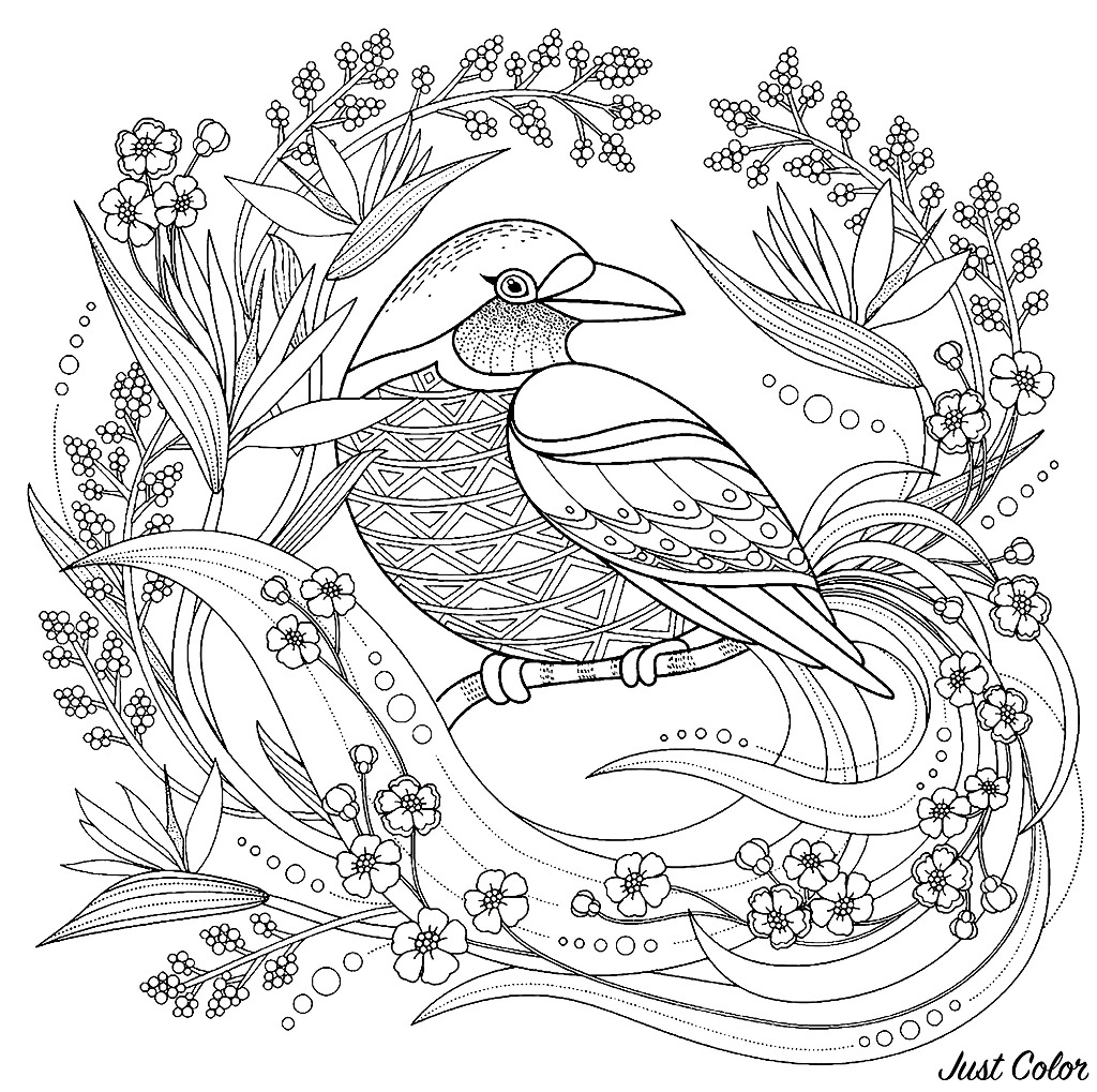 spring birds coloring pages spring bird and flowers coloring for teens woo jr kids coloring pages birds spring