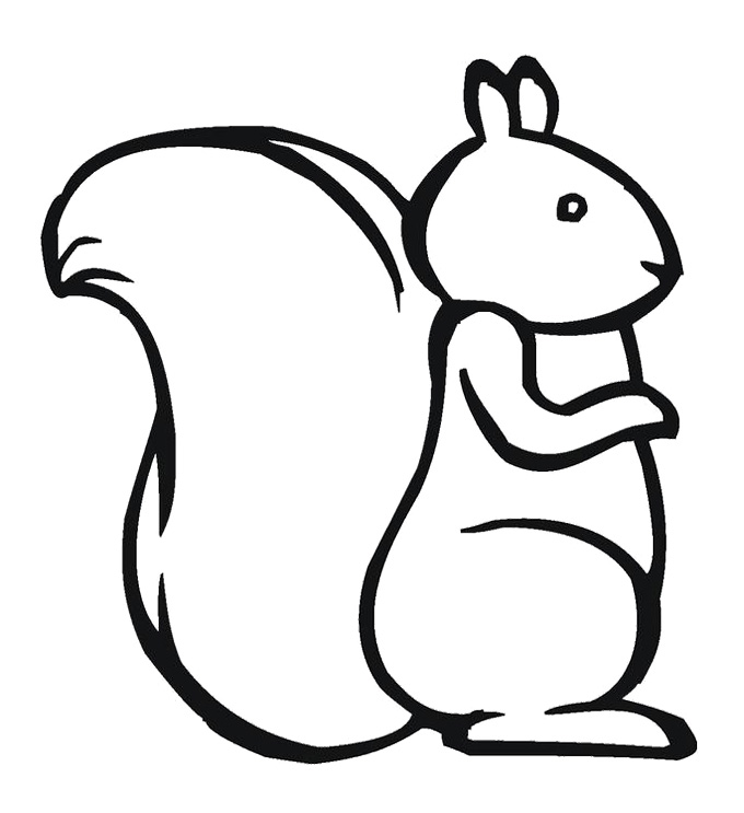squirrel colouring disney squirrel coloring page download print online colouring squirrel