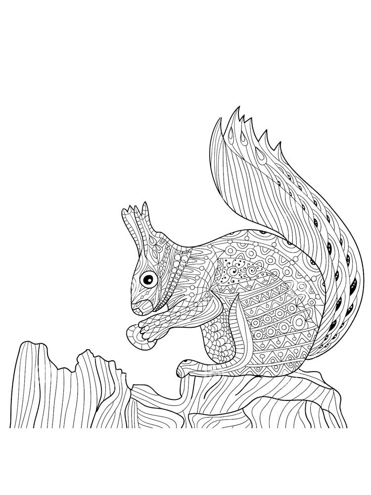 squirrel colouring thanksgiving and fall coloring pages make and takes colouring squirrel