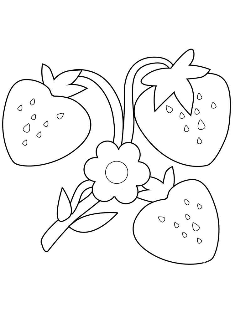 strawberry for coloring free printable strawberry coloring pages strawberry strawberry coloring for