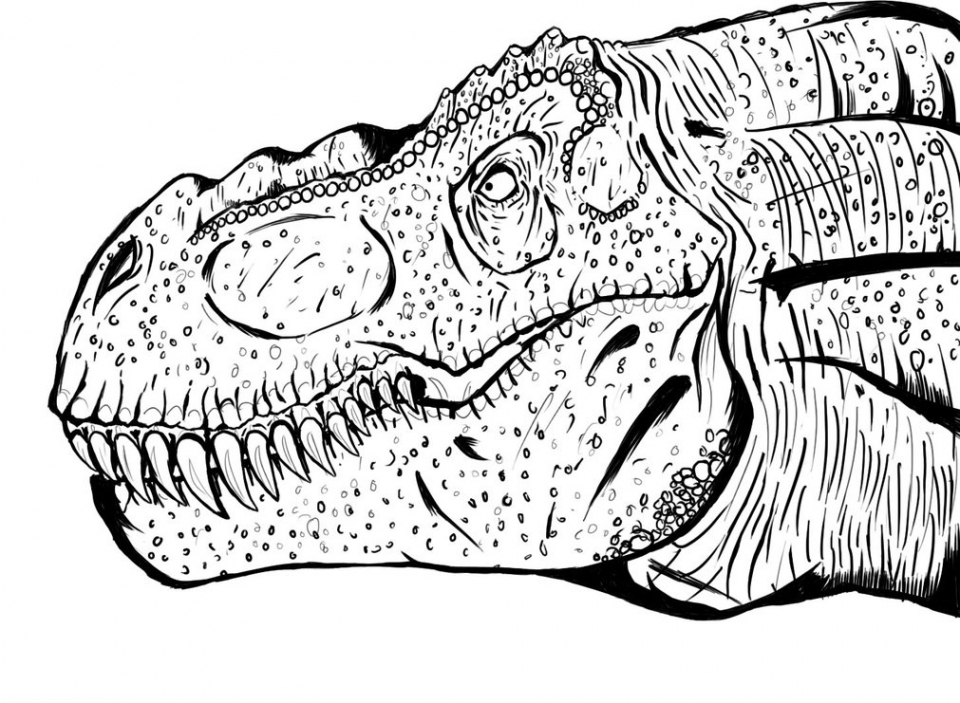 t rex printable t rex coloring pages free printable images for coloring rex t printable