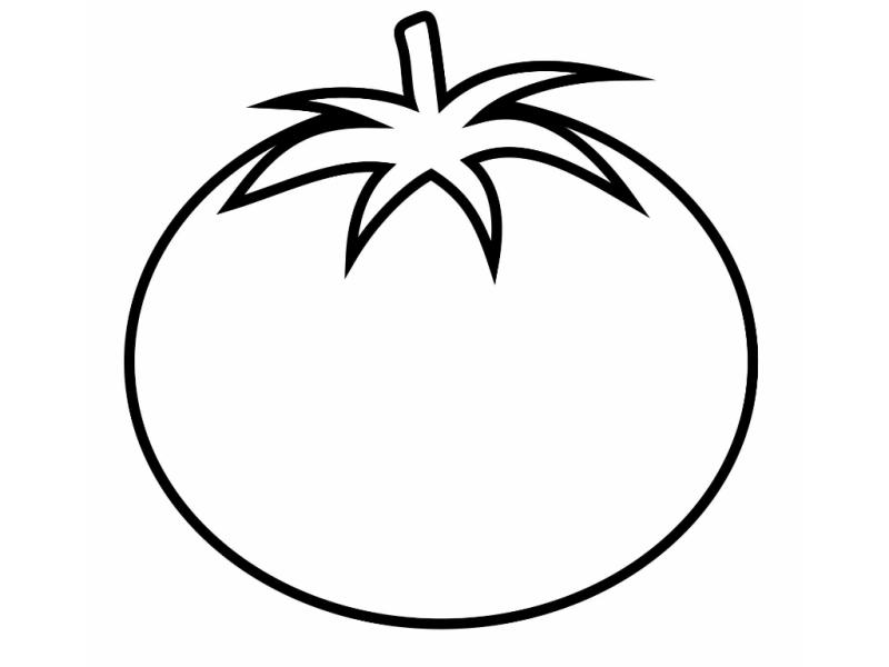 tomato outline tomato line drawing at getdrawings free download tomato outline