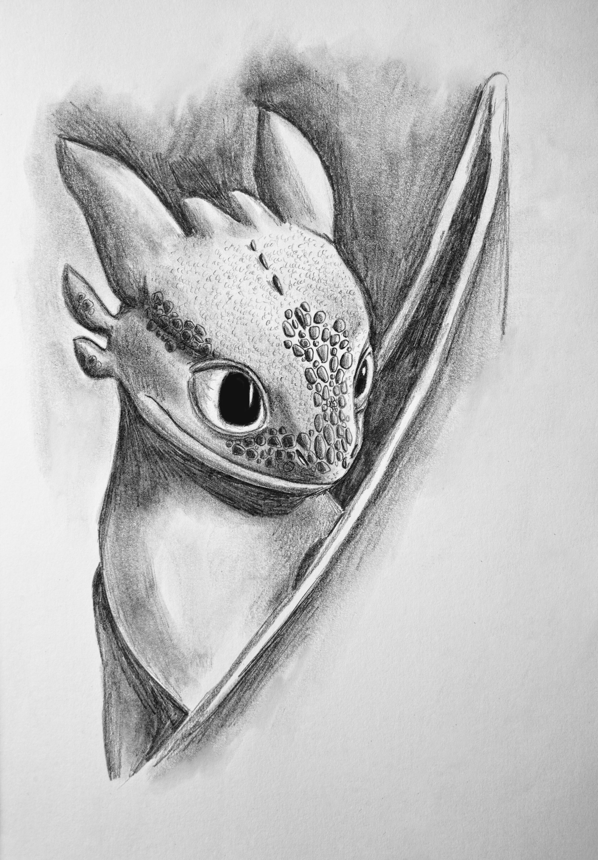 toothless dragon drawing toothless in 2019 how train your dragon how to dragon toothless drawing