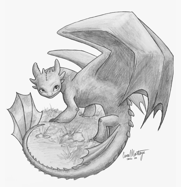 toothless dragon drawing toothless sketches 2 by ariellamay on deviantart toothless drawing dragon
