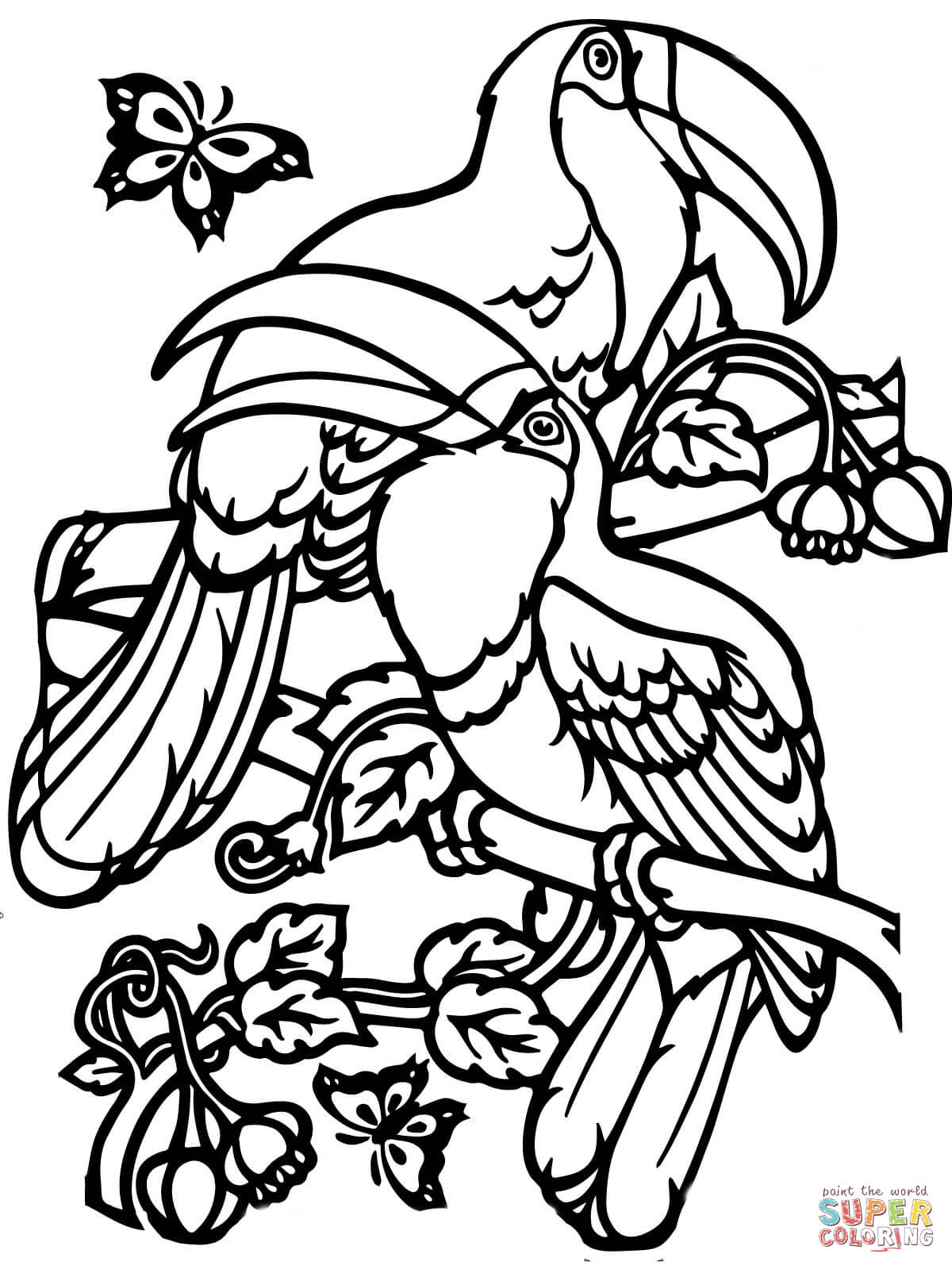 toucan coloring toucan coloring pages coloring pages to download and print coloring toucan