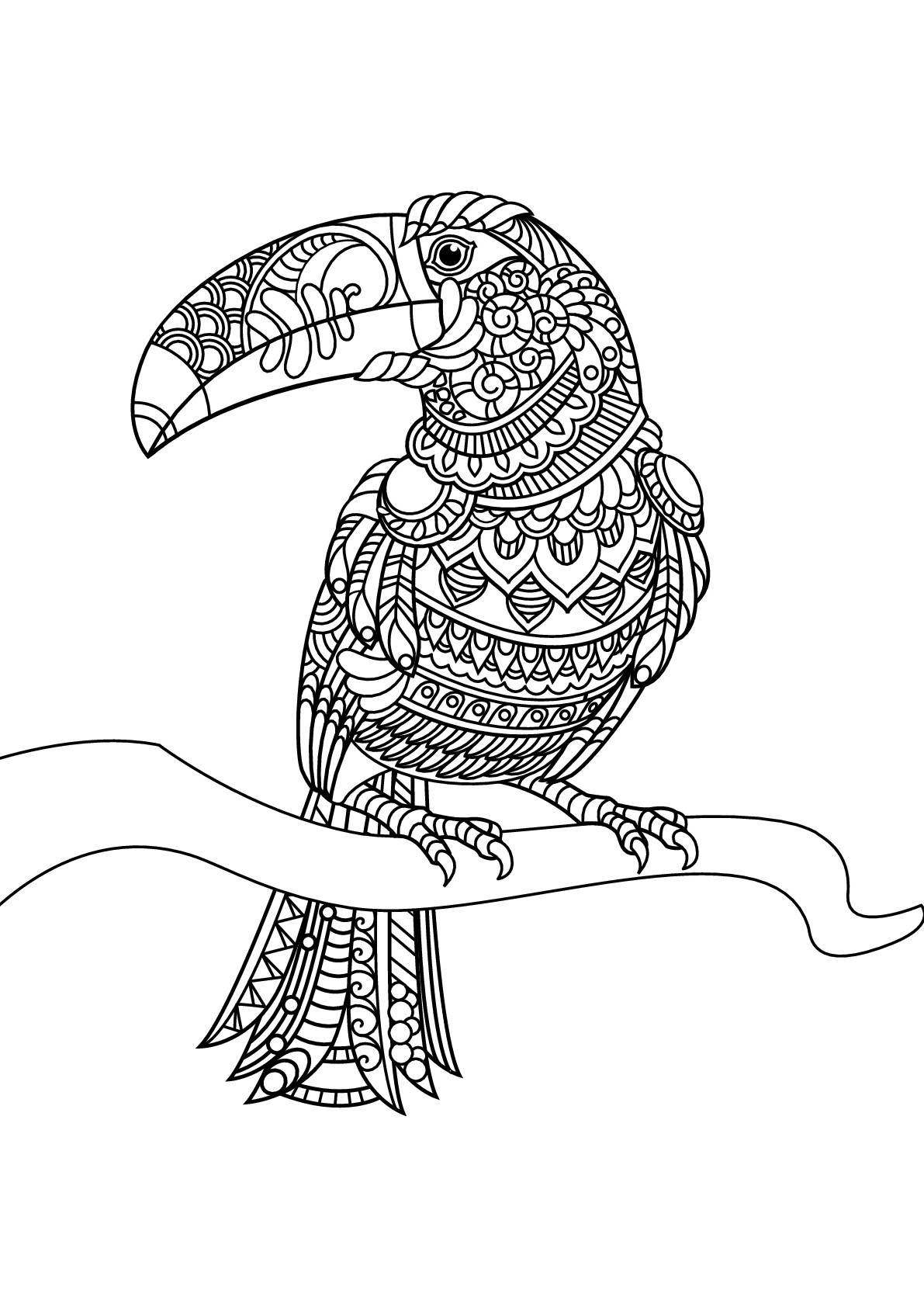 toucan coloring toucan coloring pages coloring pages to download and print coloring toucan 1 1