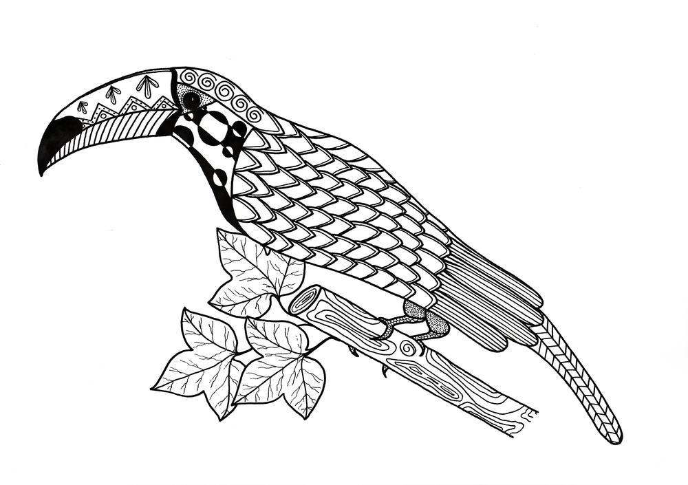 toucan coloring toucan coloring pages download and print toucan coloring coloring toucan