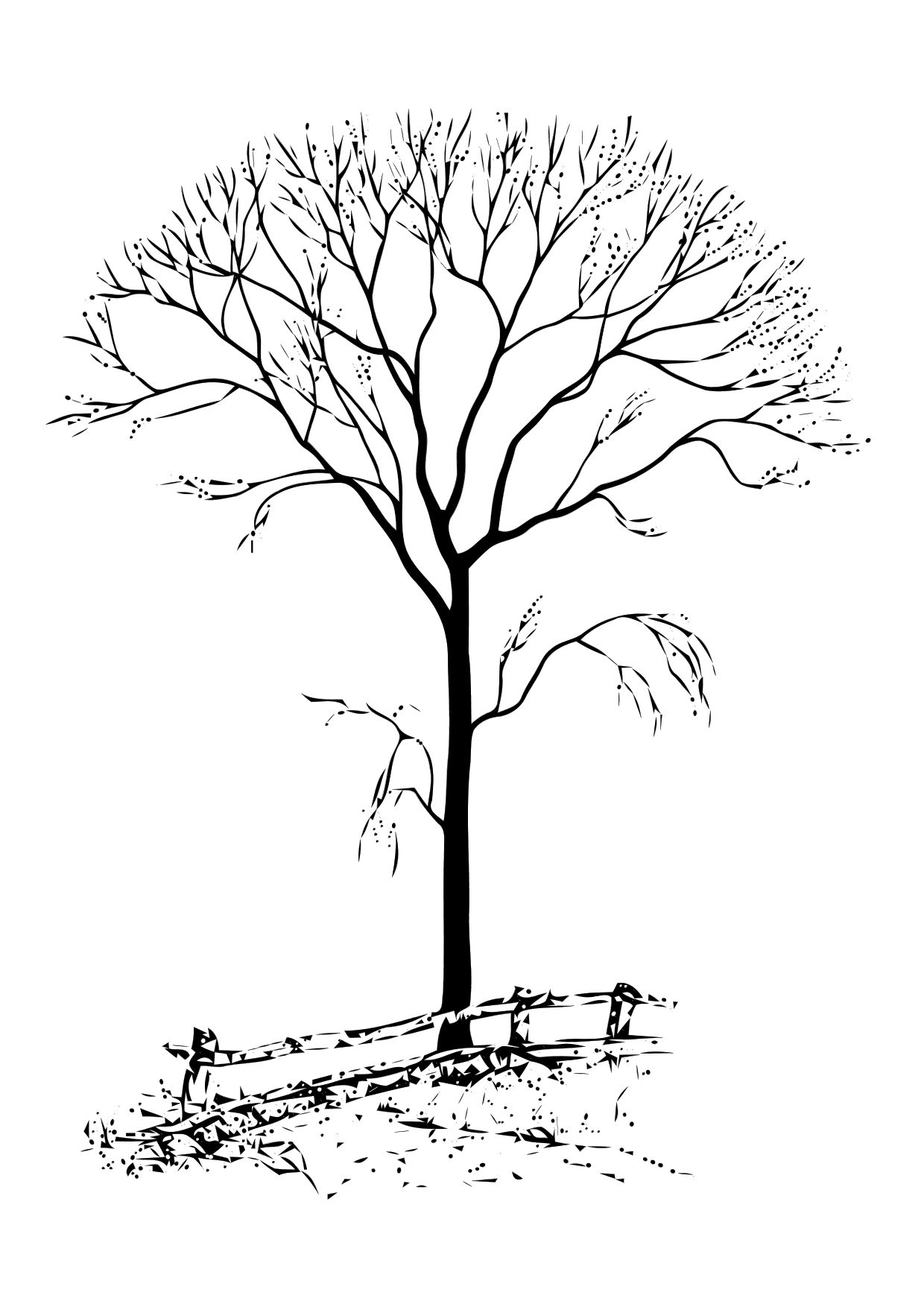 tree to color free printable tree coloring pages for kids color tree to
