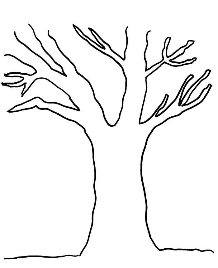 tree trunk coloring page bare tree template clipartsco coloring page tree trunk