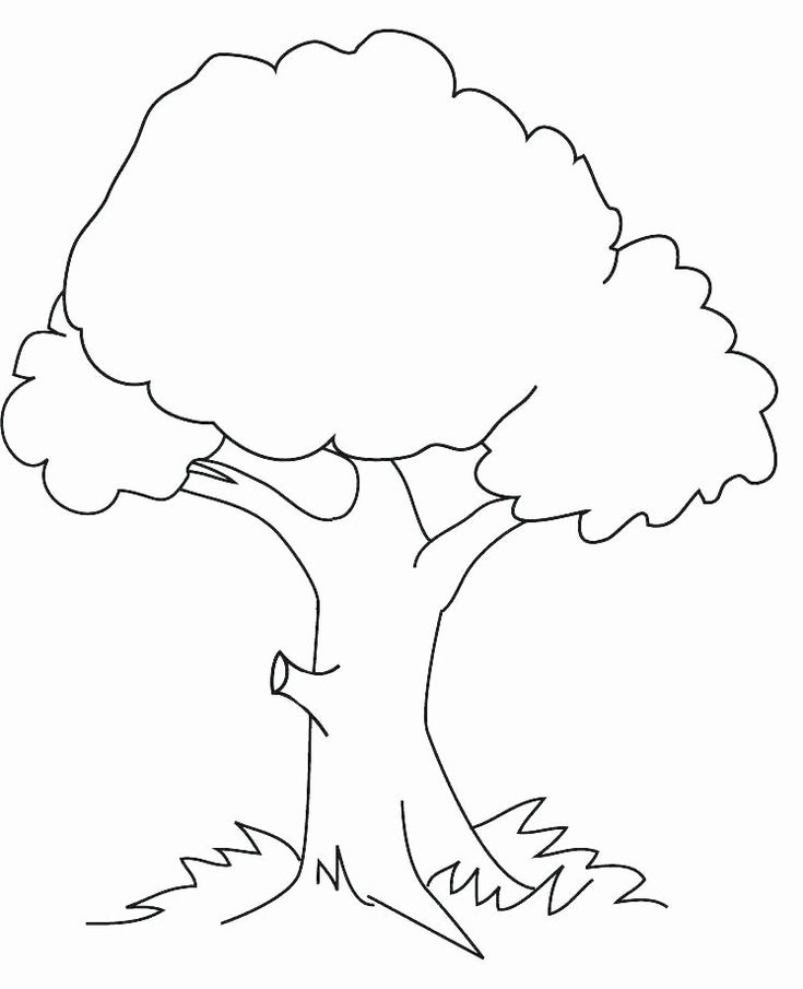 tree trunk coloring page tree trunk coloring page inspirational coloring page of a coloring tree trunk page