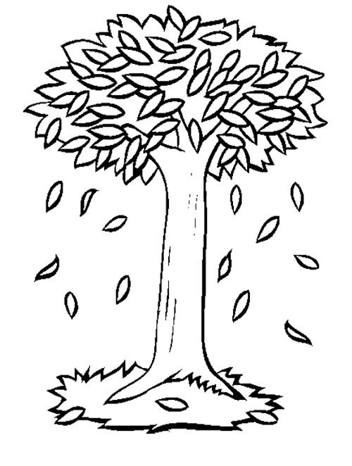 tree with leaves coloring pages free printable tree coloring pages for kids cool2bkids tree leaves pages with coloring