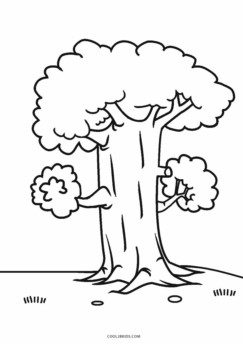tree with leaves coloring pages free printable tree coloring pages for kids cool2bkids tree pages leaves coloring with