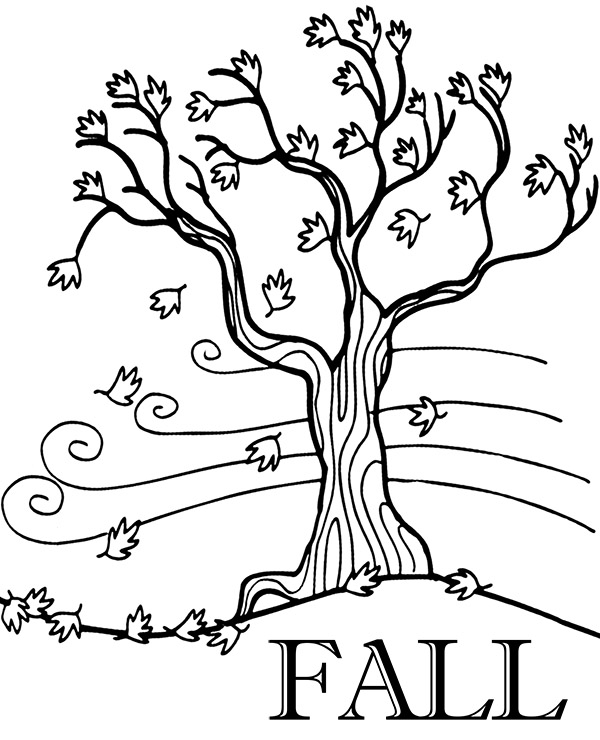 tree with leaves coloring pages magnolia tree coloring pages tree leaves with pages coloring