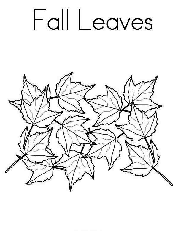 tree with leaves coloring pages maple tree leaves in autumn season coloring page netart tree with coloring leaves pages