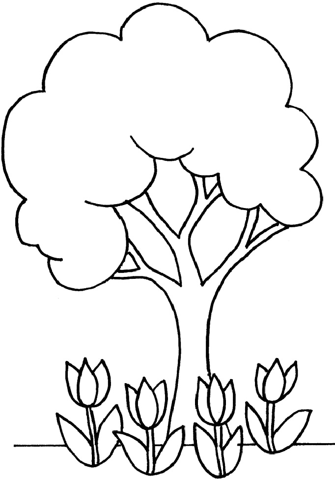 tree with leaves coloring pages maple tree worksheet educationcom with leaves tree pages coloring