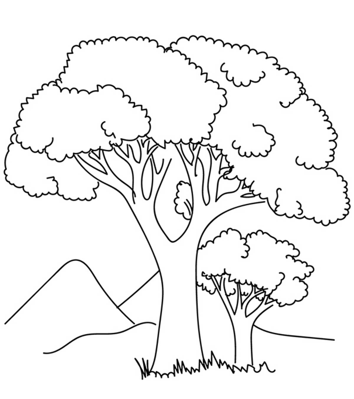 tree with leaves coloring pages tree without leaves coloring page to print and download leaves tree with coloring pages
