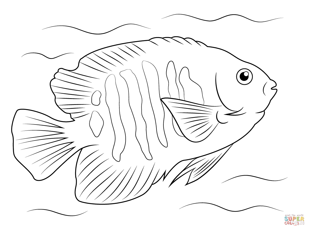 tropical fish coloring pages coloring pages fish coloring pages tropical