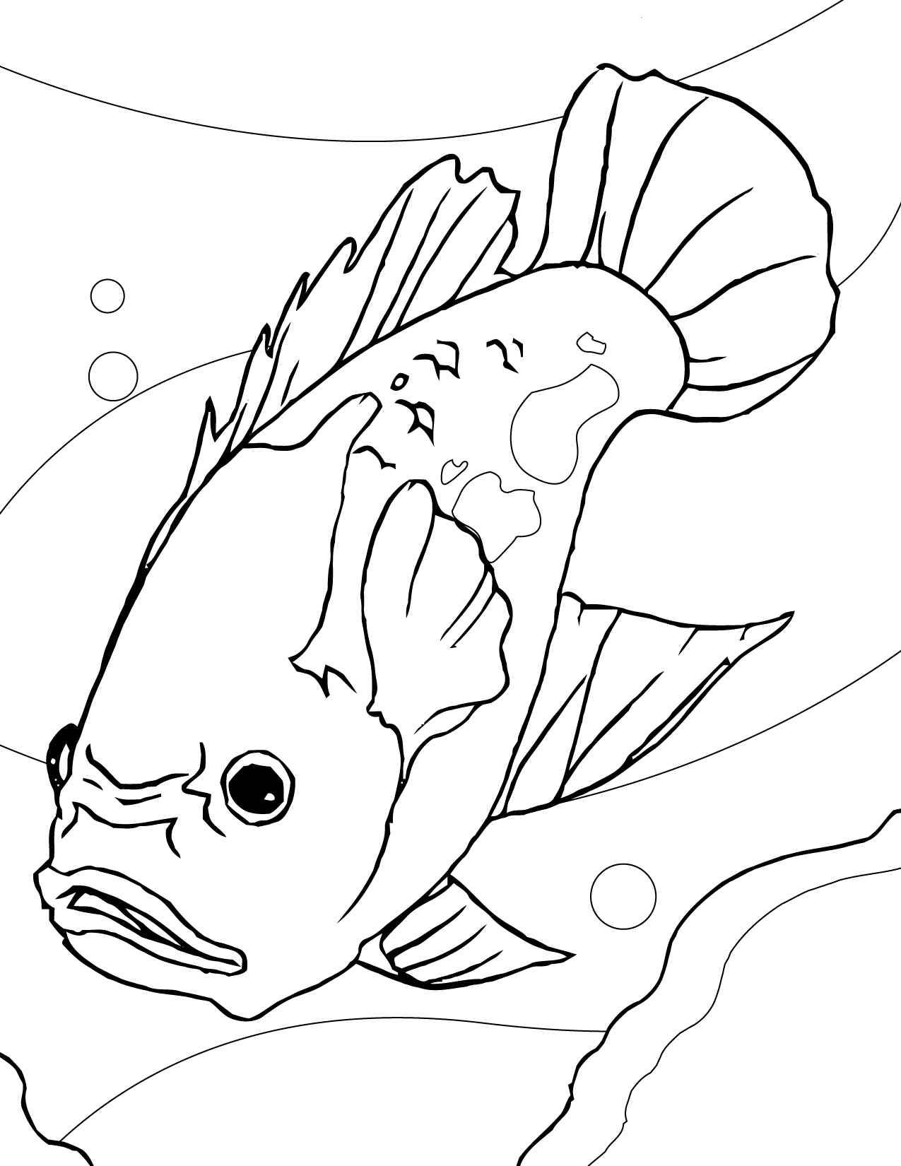 tropical fish coloring pages fish drawing images at getdrawings free download pages tropical fish coloring