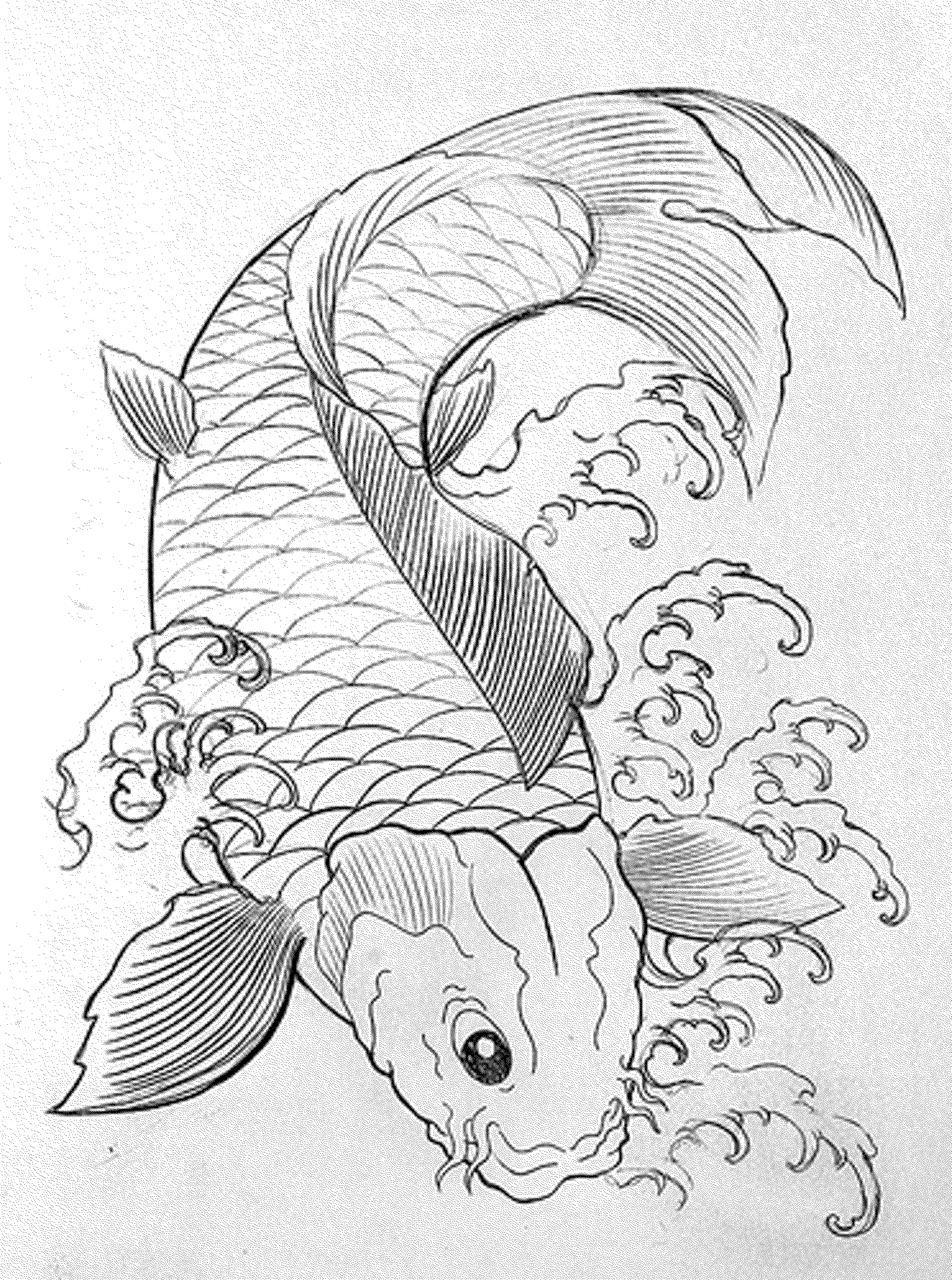 tropical fish coloring pages free koi fish coloring page download free clip art free tropical coloring pages fish