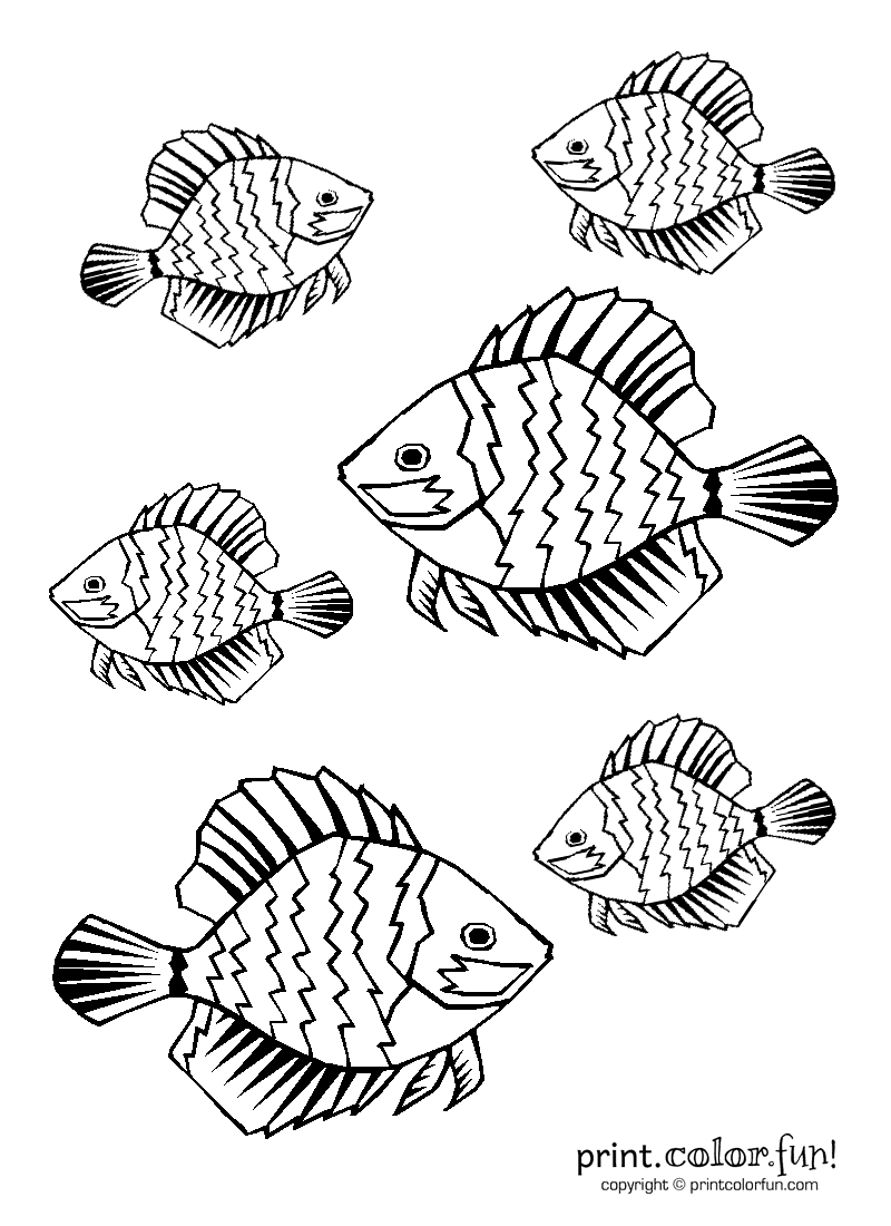tropical fish coloring pages tropical fish coloring pages getcoloringpagescom pages coloring fish tropical