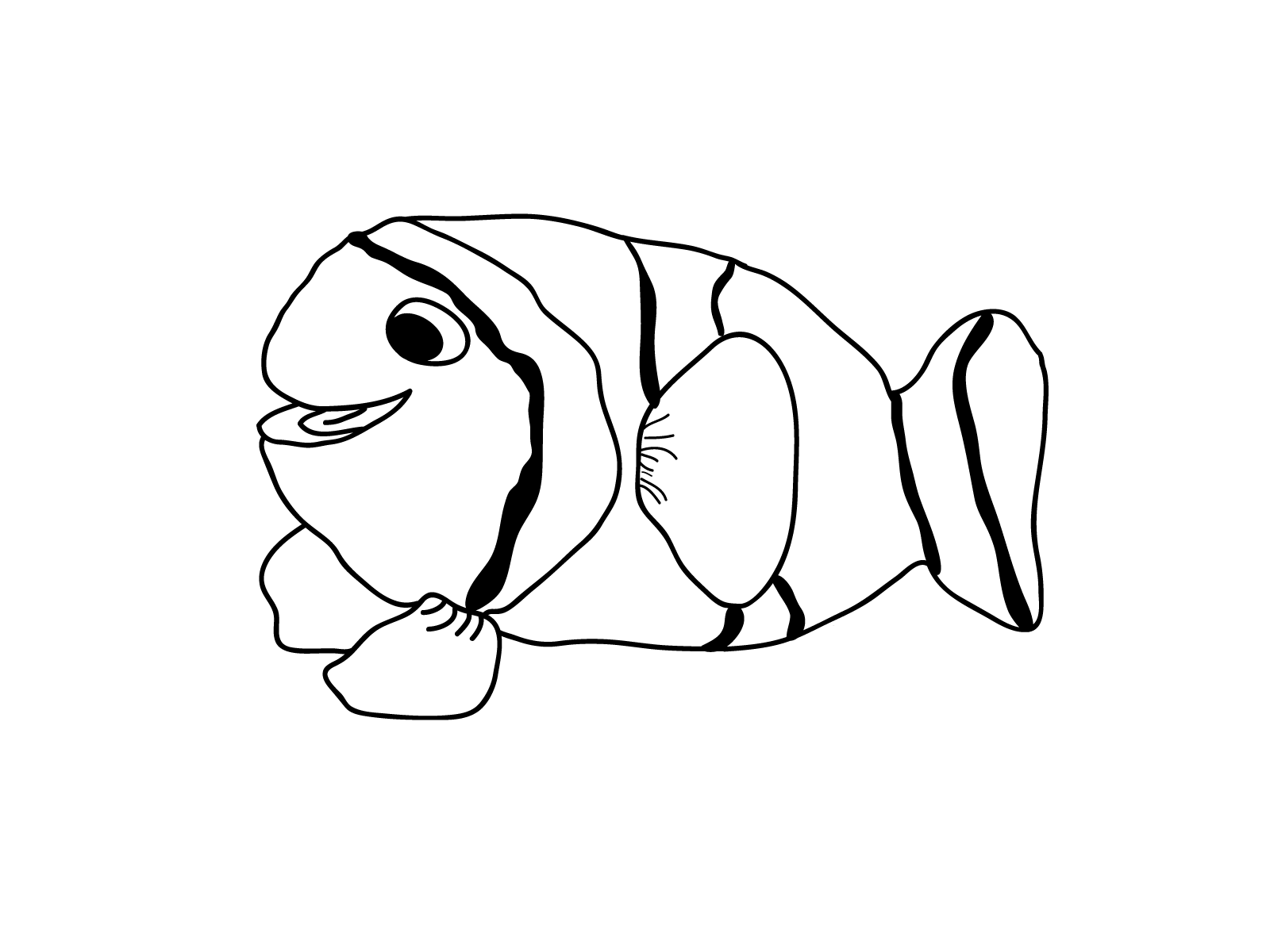 tropical fish coloring pages tropical fish drawings clipart best pages fish tropical coloring