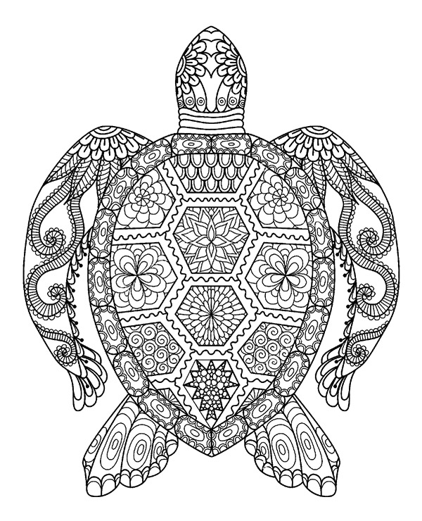 turtle coloring pictures cool tortoise turtle look coloring page turtle coloring pictures coloring turtle