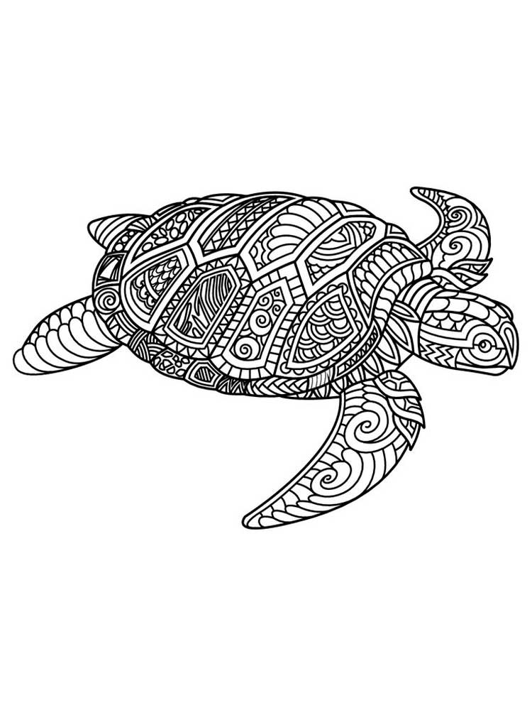 turtle coloring pictures print download turtle coloring pages as the coloring turtle pictures