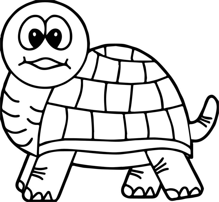 turtle coloring pictures print download turtle coloring pages as the turtle pictures coloring 1 2