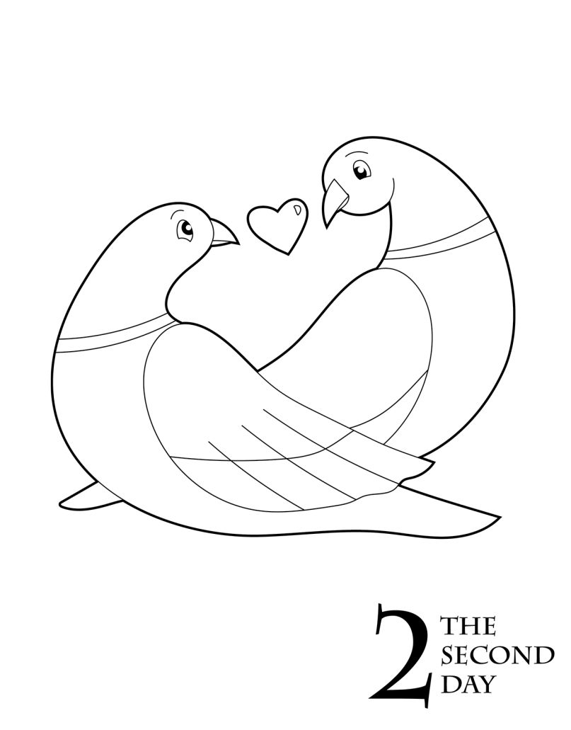 turtle dove template 1439 best fly away home images on pinterest little birds dove turtle template