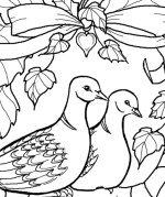 turtle dove template holy spirit dove drawing at getdrawings free download dove turtle template
