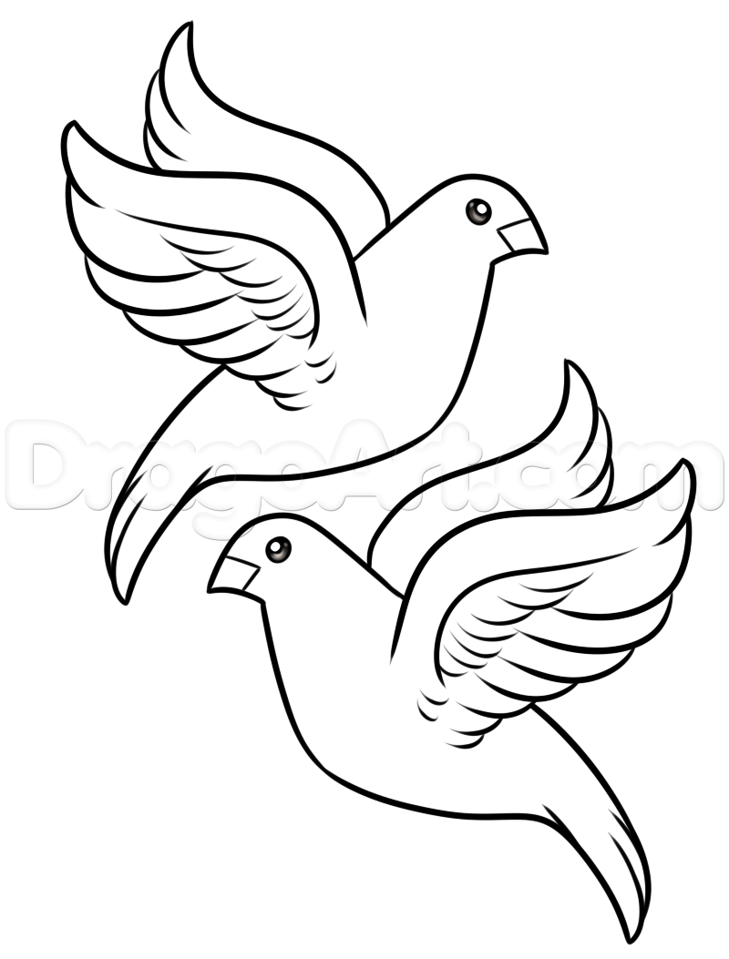 turtle dove template two turtle doves drawing free download on clipartmag dove template turtle