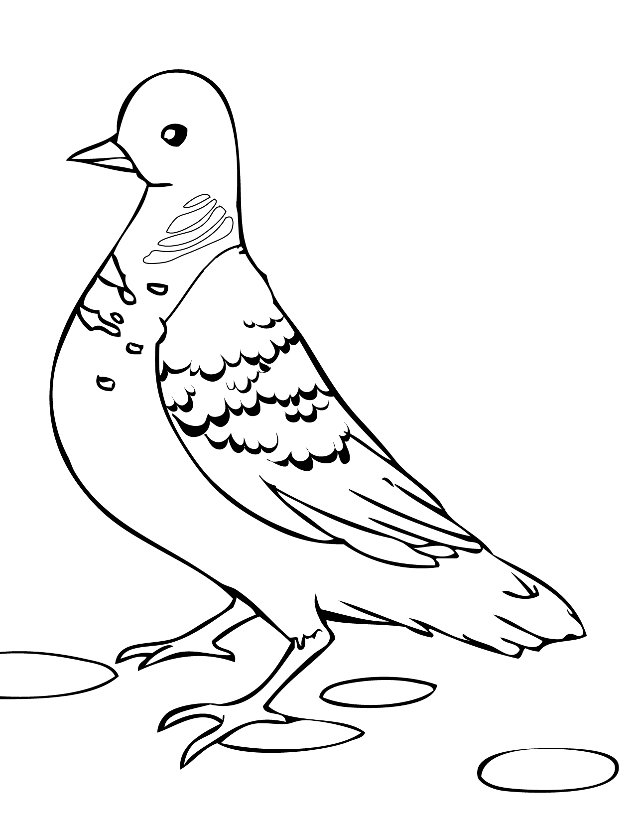 turtle dove template two turtle doves drawing free download on clipartmag dove turtle template 1 1