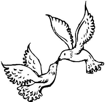 turtle dove template two turtle doves drawing free download on clipartmag turtle template dove