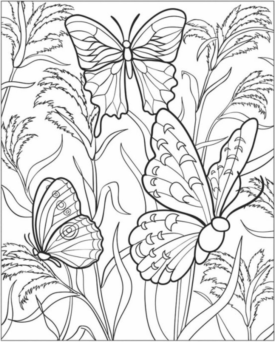 vegetable pictures to colour kids gardening coloring pages free colouring pictures to print pictures to vegetable colour