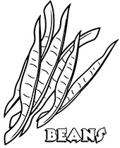 vegetable pictures to colour printable vegetable coloring pages topcoloringpagesnet colour to vegetable pictures