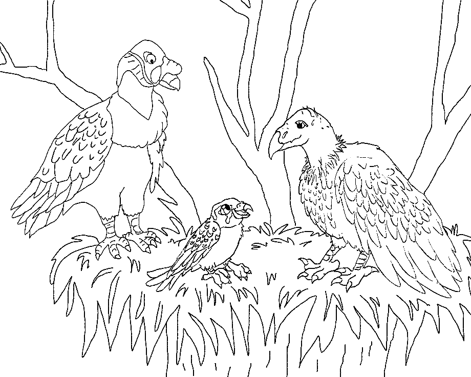 vulture images to color vulture coloring page audio stories for kids free vulture color images to
