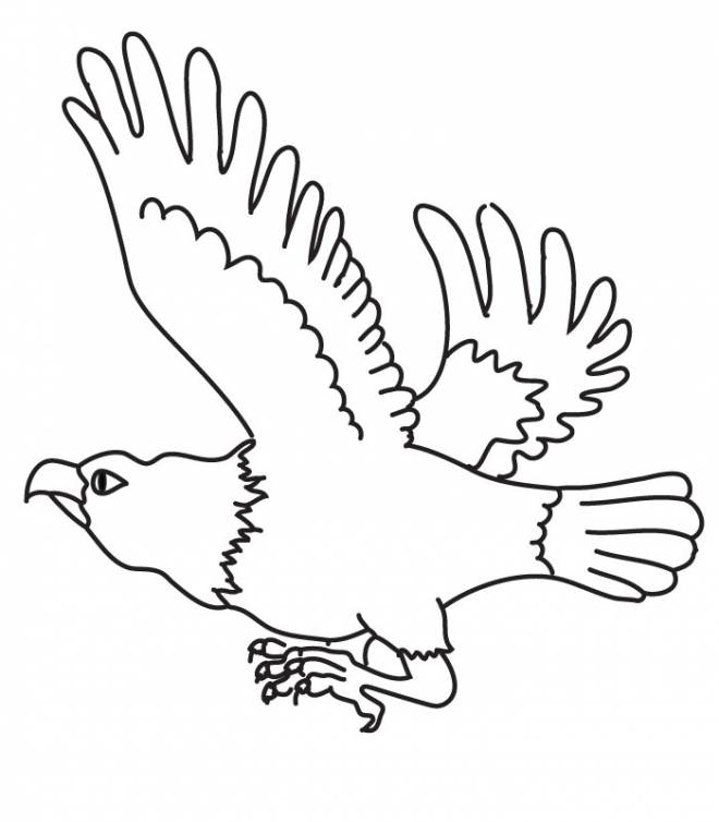 vulture images to color vulture coloring page getcoloringpagescom to vulture images color