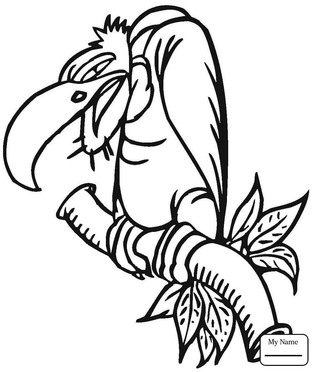 vulture images to color vulture coloring pages preschool and kindergarten images to vulture color 1 1