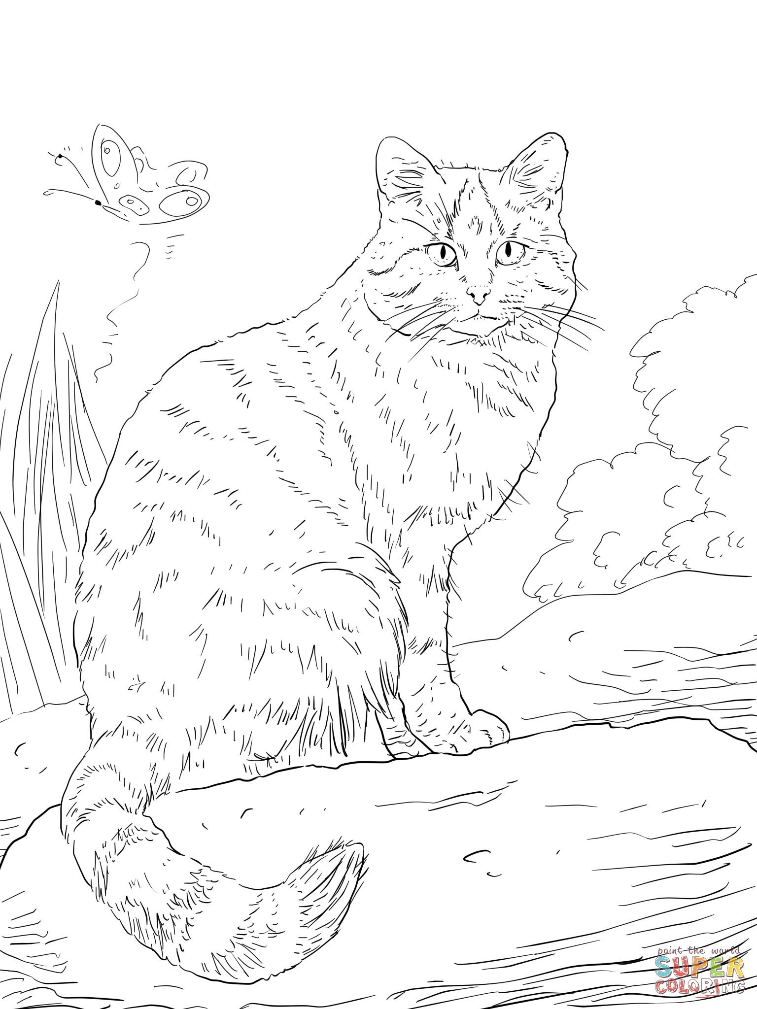 wild cat coloring pages cat coloring hard pages 2020 kitten coloring book coloring pages cat wild