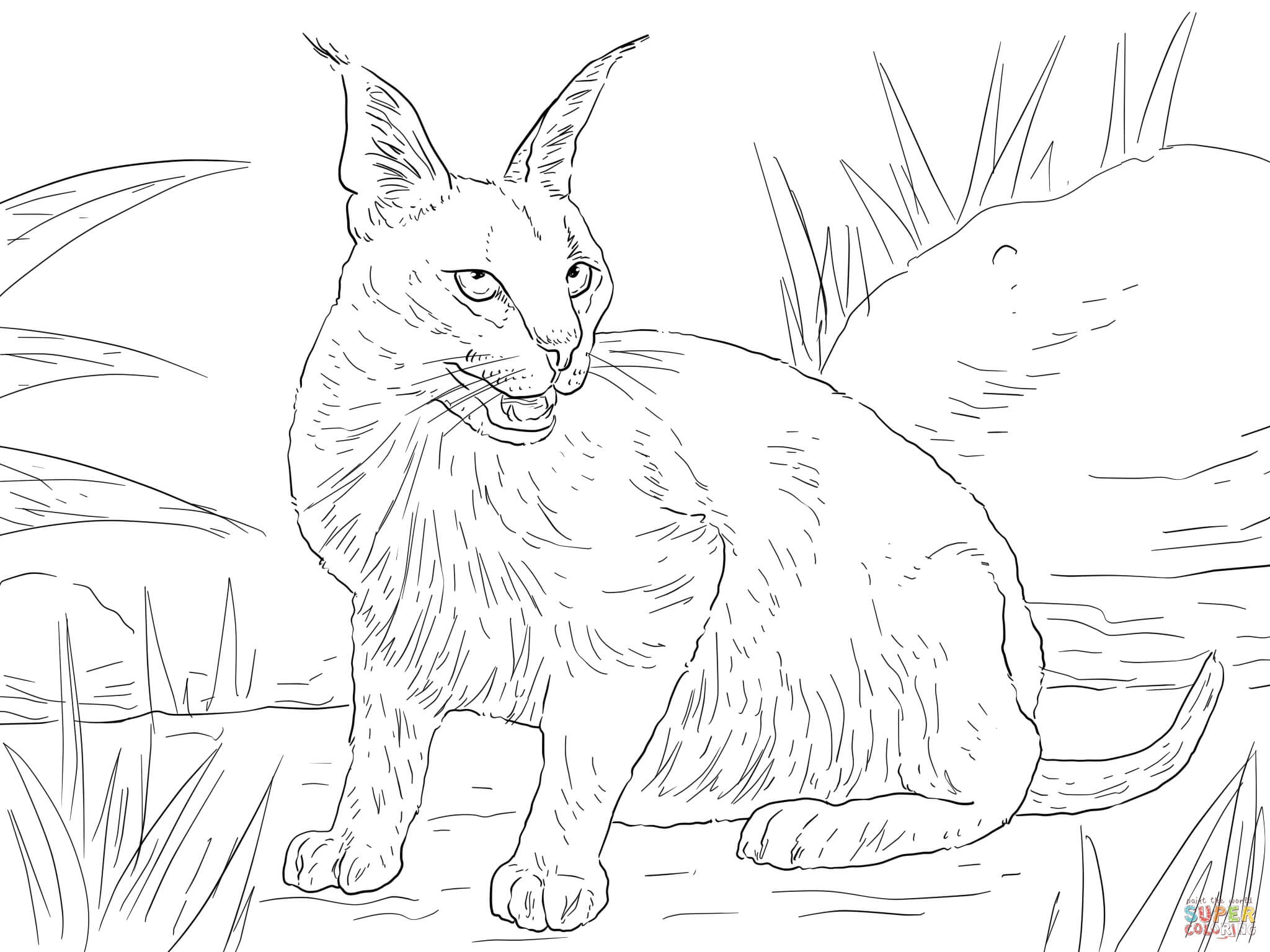 wild cat coloring pages hard owl coloring pages tiger liked wild cat in the wild cat coloring pages wild