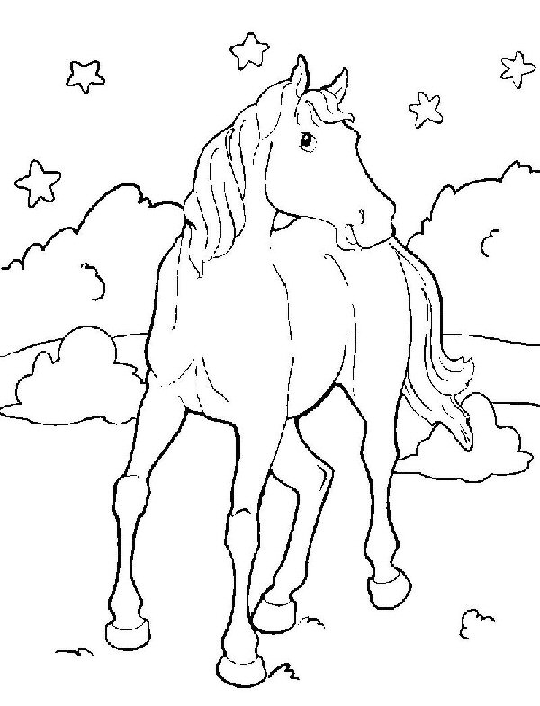 wild mustang coloring pages 526 best coloring horse zebra images on pinterest mustang wild coloring pages
