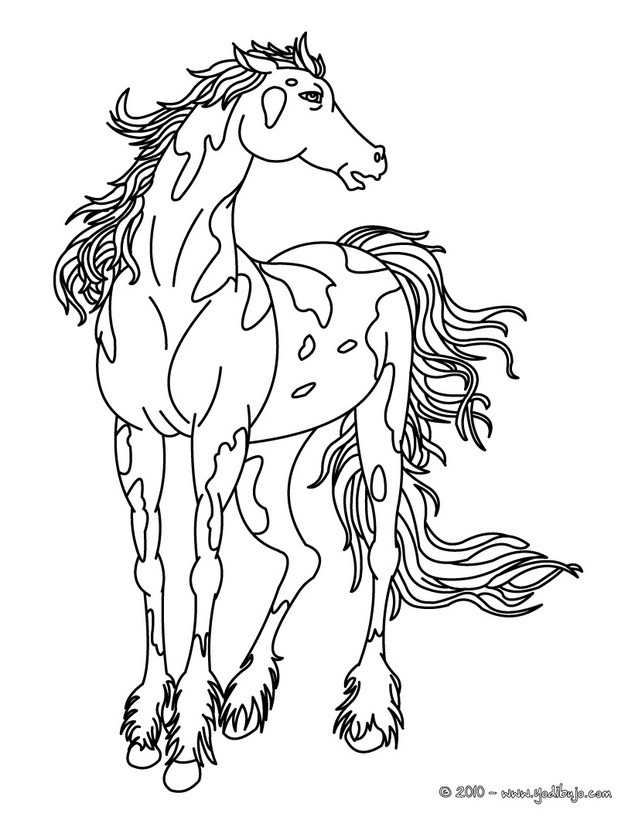 wild mustang coloring pages mustang horse coloring pages from 100 horse coloring coloring pages wild mustang