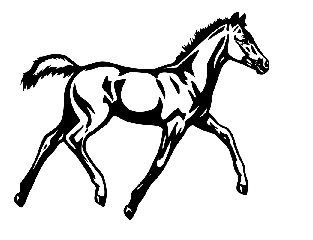 wild mustang coloring pages mustang horse pages coloring pages coloring wild pages mustang